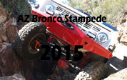 2015 Arizona Bronco Stampede