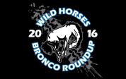 WILD HORSES Round-Up April 2, 2016