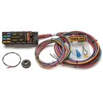 Painless Race Only Chassis Wiring Harness - 10 Circuits