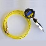 Power Tank TIG-8330 Digital Tire Inflator 150 PSI Hose Whip Clip-on