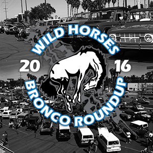 WILD HORSES Roundup 2016