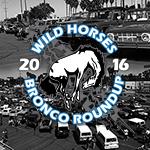 WH Round-up 2016