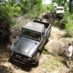 2006 Spring Roundup