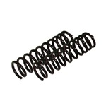 Variable Rate Stock Coil Springs Pair