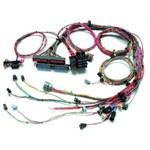 Painless Fuel Injection Harness 99-02 GM LS-1 Std. Length
